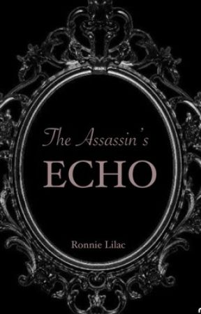 The Assassin's Echo by totorowritesbooks