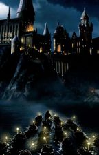 harry potter and the chamber of slutty whores by RentFord