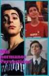 MIS HERMANOS PERVERTIDOS ( Aidan, Ryan, Cinco y tu )  cover