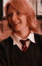 The Weasley Twin's Bestfriend (George Weasley x reader) by mcody07