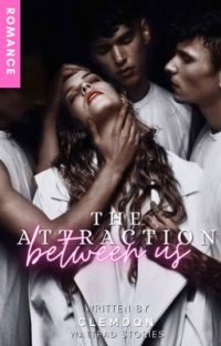The Attraction Between Us cover