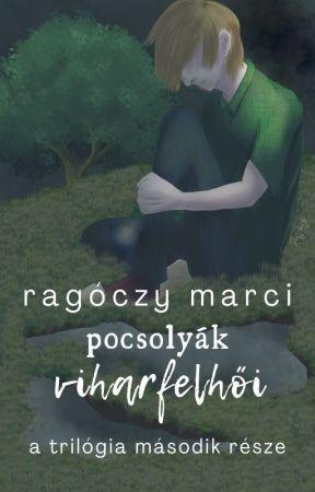 pocsolyák viharfelhői by ragoczy_marci
