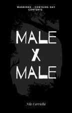 Anime Male x Male reader by Lumine-Fox