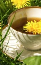 {Dandelion tea with a dash of Hibiscus} by BadWriterLmfao
