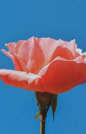 𝙸𝚖𝚖𝚘𝚛𝚝𝚊𝚕𝚒𝚝𝚢 (bsd various x male reader) by furtiveflower