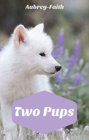 Two Pups (bxbxb) by Aubrey-Faith