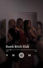 Dumb Bitch Club (Stray Kids ff) by TheNamesKyle