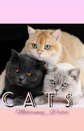 Three Cats by Modernong_Writer