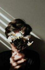 Little Flower  by darkrabbit20