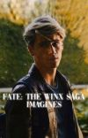 Fate: The Winx Saga Imagines and Preferences cover