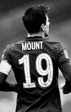 Mason Mount x reader by tyna-19