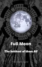 Full Moon - The brithest of them All by fabioatf