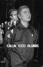 calum hood blurbs by wildflwrcth