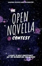 Open Novella Contest (2021) Promotions by Meagz56