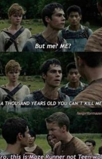 Teen Wolf/The Maze Runner Crossover  cover