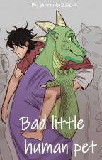 Bad little human pet by Acerola2004