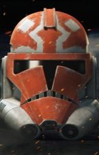 Clone Headcanon's by gbow1999