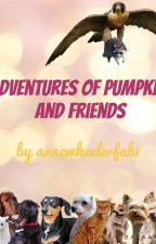 Adventures of Pumpkin And Friends by annewheelerfab1