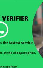 Best WhatsApp Verifier service across the globe. by shubhangirawat123