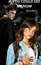 If you could see me now •hp•  by Acci0harry