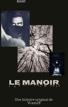 Le Manoir by vcam28