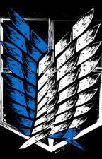 Male Ackerman reader x attack on titan by Pixelatedfire10