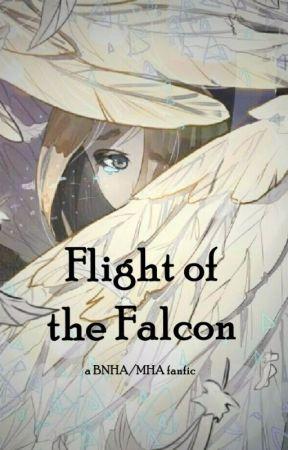 Flight of the Falcon [BNHA x Hawks' Sister] by Azallya