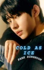 Cold As Ice || Park Sunghoon by jayjakejk1