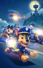 Rain's future a paw patrol sequel  by pawparolllover