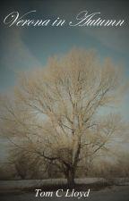 Verona in Autumn by TomCLloyd