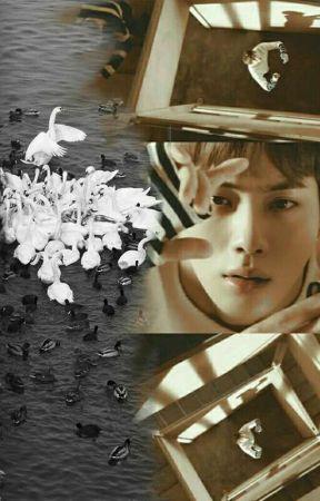 Light by bellova_