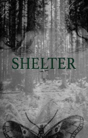 Shelter // H.S by hrrylovr