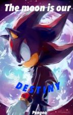 The Moon Is Our Destiny [Sonic x Shadow] by pengeo