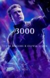 3000 cover