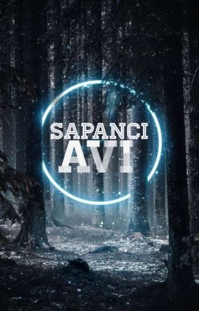 SAPANCI AVI  by moleyenmelek
