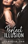 Perfect Illusion (EBOOK PUBLISHED) cover