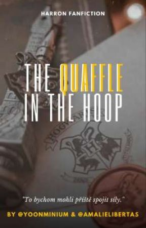 The Quaffle in the Hoop | cz by yoonminium