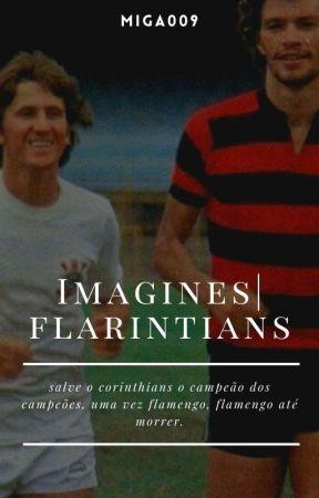IMAGINES    FLAMENGO by miga009