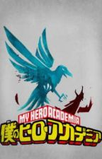 The Infamous Vigilante wants to be a Hero? (My Hero Academia x Reader) by Hayacchis