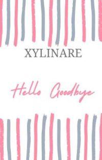 Hello Goodbye cover