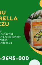 Pabrik Keju Mozzarella Chizzu ke Kabupaten Mojokerto by KejuMalang