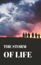 The Storm Of Life door BsMaite