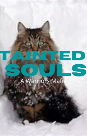 Tainted Souls - A Warrior Cats Mafia by foxyfirephoenix