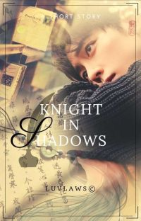 Knight In Shadows cover
