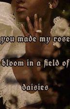 you made my rose bloom in a field of daisies (black lesbians)  by BEESSWARMING