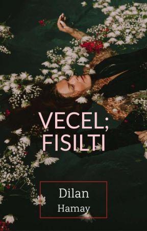 VECEL; FISILTI by _lgeceninkoynundal_