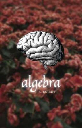 algebra ; a. knight  by LUCKYWARRIORS