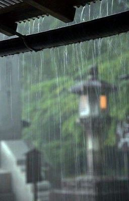 Đọc truyện [HDY| Series] Thích em vào một ngày mưa