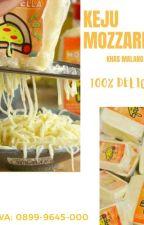 Pabrik Keju Mozarella Chizzu HALAL MUI by KejuMalang
