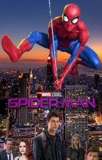 Spiderman, el comienzo by elrogtine